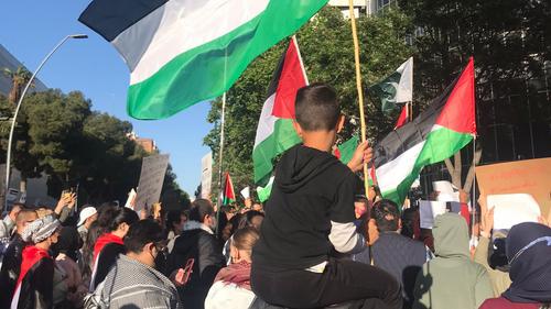Violencia armada en Palestina