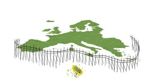 Logo Campaña Stop Muros